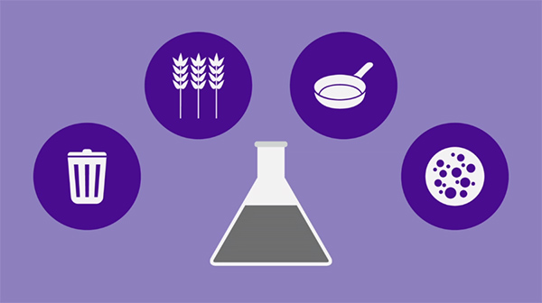 Image showing ingredients of sustainable fuel